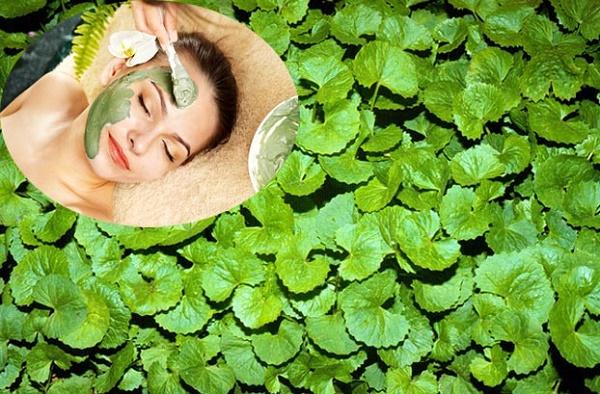 Bắt tay cùng làm mặt nạ rau má chữa trị mụn và làm đẹp da hàng ngày
